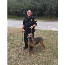 View full profile for Alamo City Malinois