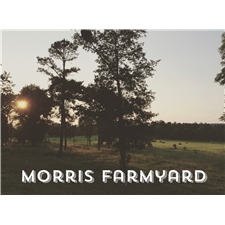 View full profile for Morris Farmyard