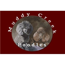 View full profile for Muddy Creek Poodles