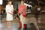 Picture of Grand Champion Sired- Elaine