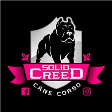 View full profile for Solid Creed