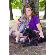 View full profile for S.D.P Kennels