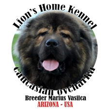 View full profile for Lion's Home Kennel