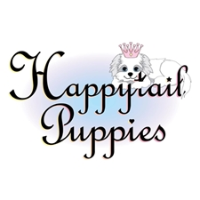 View full profile for Happy Tail Puppies