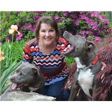 View full profile for Presley's Blue Pits