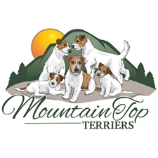 View full profile for Mountain Top Terriers