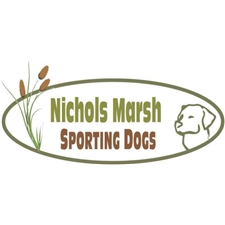 View full profile for Nichols Marsh Sporting Dogs