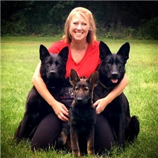 View full profile for Auf Der Marquis German Shepherds