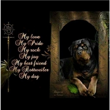 View full profile for Von Kelley Rottweilers