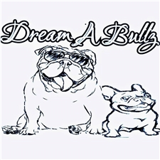 View full profile for Dream-A-Bullz