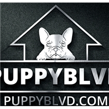 View full profile for Puppyblvd