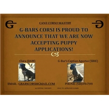 View full profile for Gbars Corsi
