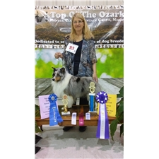 View full profile for Doublebshowdogs