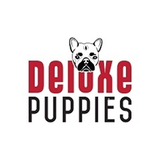 View full profile for Deluxe Puppies