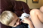 Picture of AKC Male White Whippet Puppy