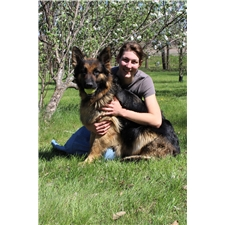 View full profile for Shepherd Pawz Kennel