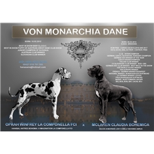 View full profile for Von Monarchia Dane Europa Original