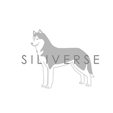 View full profile for Siliverse