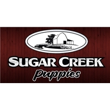 View full profile for Sugar Creek Puppies