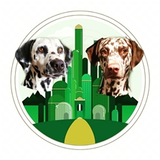 View full profile for Emerald City Dalmatians