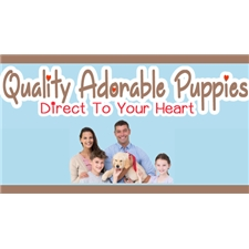 View full profile for Puppies Direct