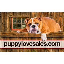 View full profile for Puppylovesales.Com