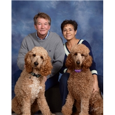 View full profile for Red Standard Poodles