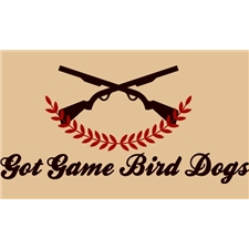View full profile for Got Game Bird Dogs
