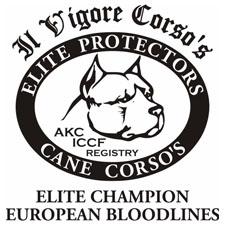 View full profile for Il Vigore Cane Corso