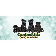 View full profile for Caninekidz