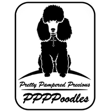View full profile for Ppppoodles