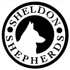 View full profile for Sheldon Shepherds, Llc