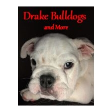 View full profile for Drake Bulldogs And More