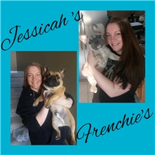 View full profile for Jessicah's Frenchies