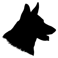 View full profile for Draigo's Pups