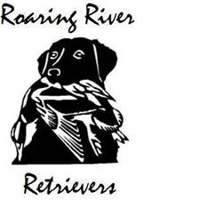 View full profile for Roaring River Retrievers