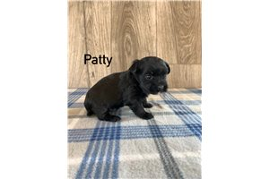 Picture of Patty