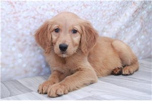 Picture of Buffy