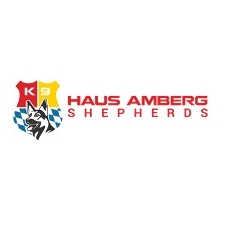 View full profile for Haus Amberg Shepherds