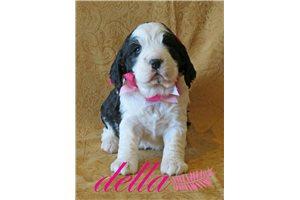 Picture of Della