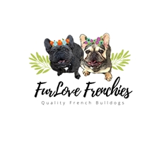 View full profile for Furlove Frenchies