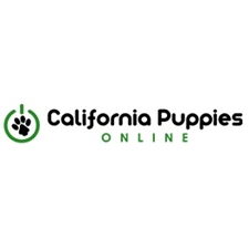 View full profile for California Puppies Online