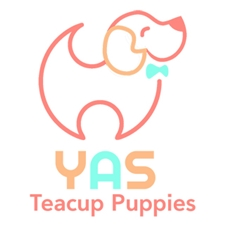 View full profile for Yaspuppy