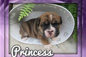 Picture of Princess