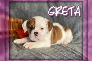 Picture of Greta