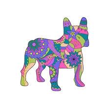 View full profile for Umpqua Valley Kennels Llc French Bulldogs