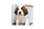 Picture of Lenny Beautiful Rough Coat Male