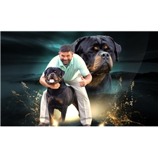 View full profile for Dkv Rottweilers