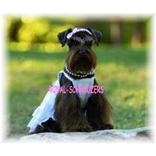 View full profile for Royalschnauzers