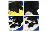 Featured Breeder of Portuguese Water Dogs with Puppies For Sale